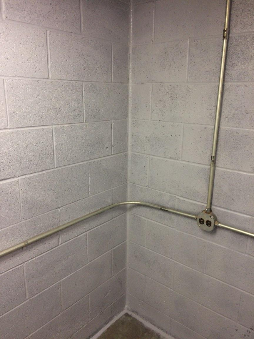 Mold Removal In Buffalo Ny Mold Remediation Mold Testing