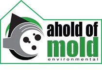 ahold of mold logo